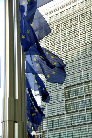 Европейската инвестиционна банка хазяин на Катрин Аштън