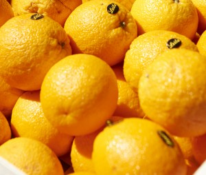 Oranges on a market. Prize tag